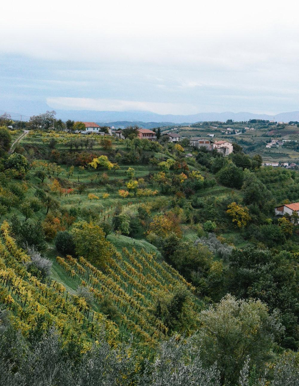 day-trips-western-slovenia-lifeonpine_DSC_0839.jpg