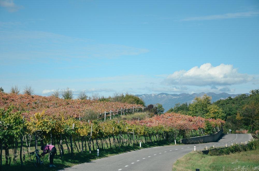 day-trips-western-slovenia-lifeonpine_DSC_0951.jpg