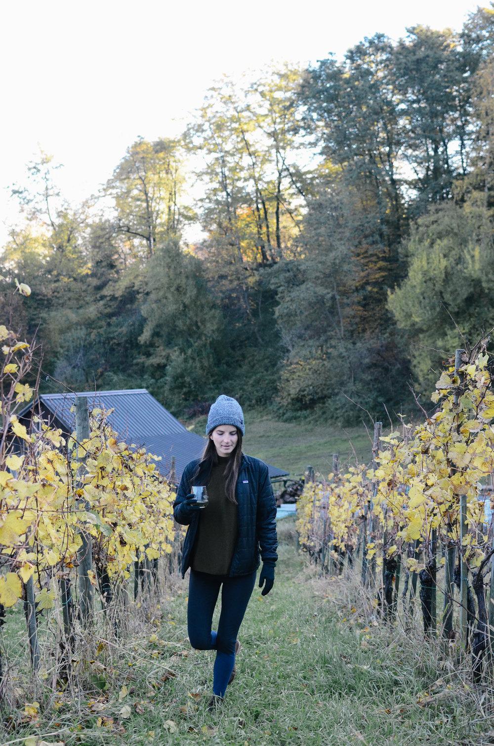 slovenia-travel-glamping-chateau-ramsak_DSC_2184.jpg