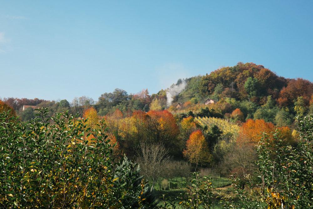 slovenia-travel-glamping-chateau-ramsak_IMG_4708.jpg