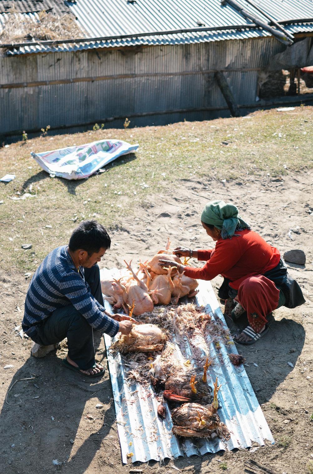 nepal-trek-annapurna_DSC_1172.jpg