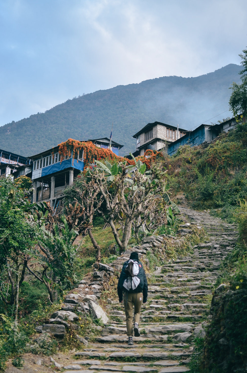 nepal-trek-annapurna_2_day_trekking_nepal_.jpg
