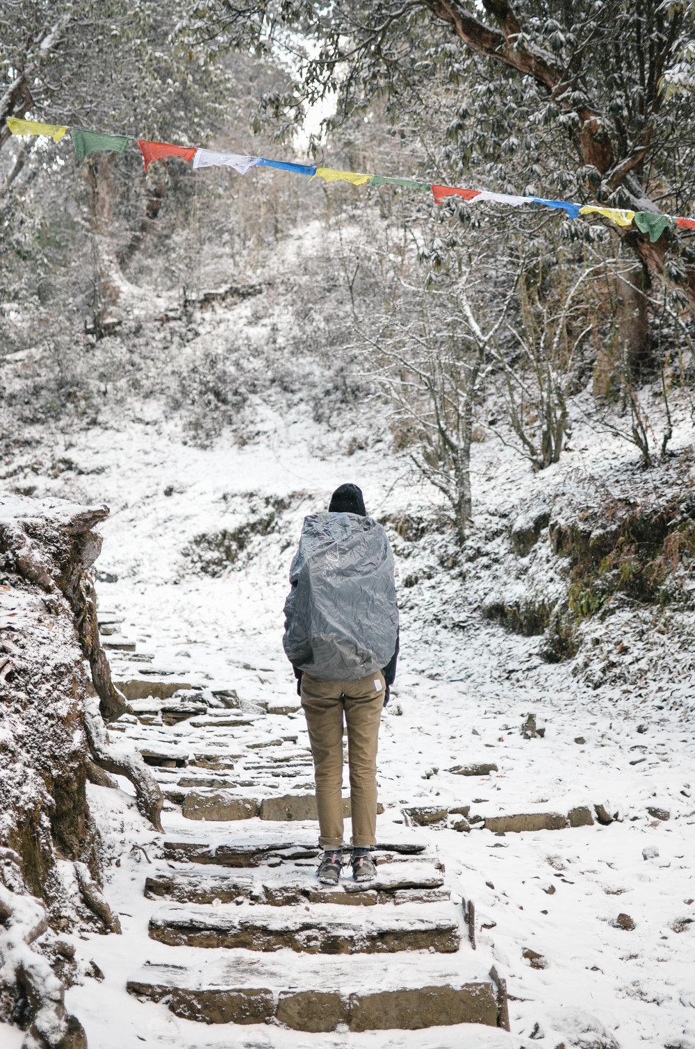 nepal-trek-annapurna_DSC_1262.jpg