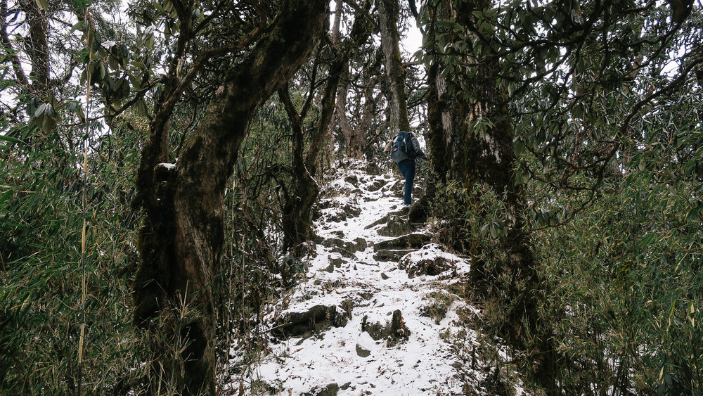 nepal-trek-annapurna_IMG_0745.jpg