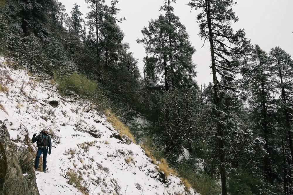 nepal-trek-annapurna_IMG_0750.jpg
