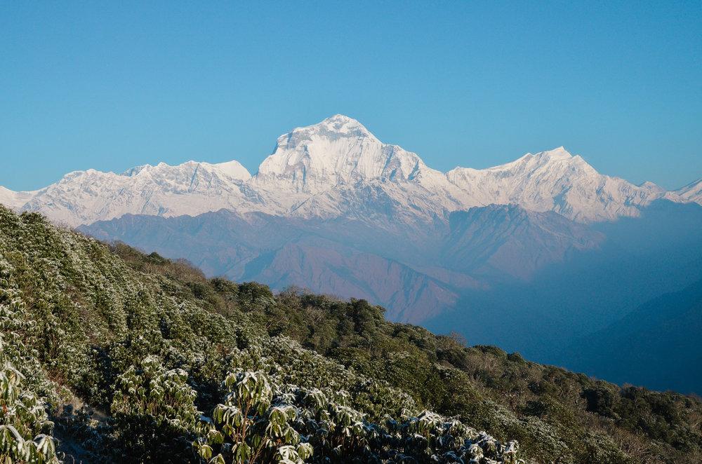 nepal-trek-annapurna_DSC_1333.jpg