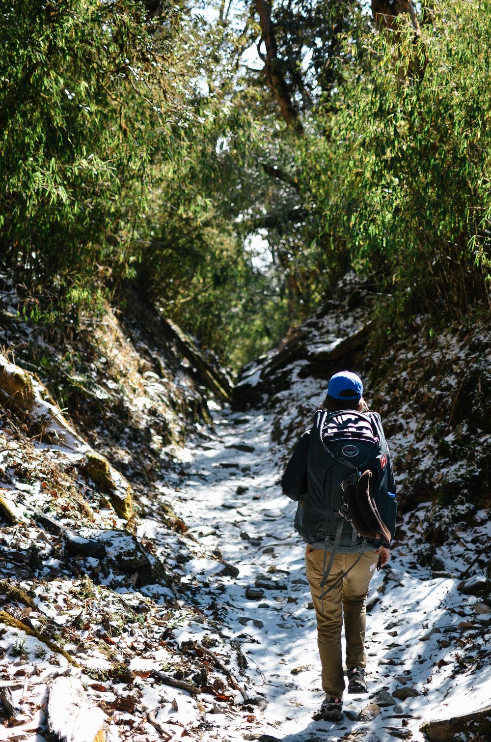 nepal-trek-annapurna_DSC_1523.jpg