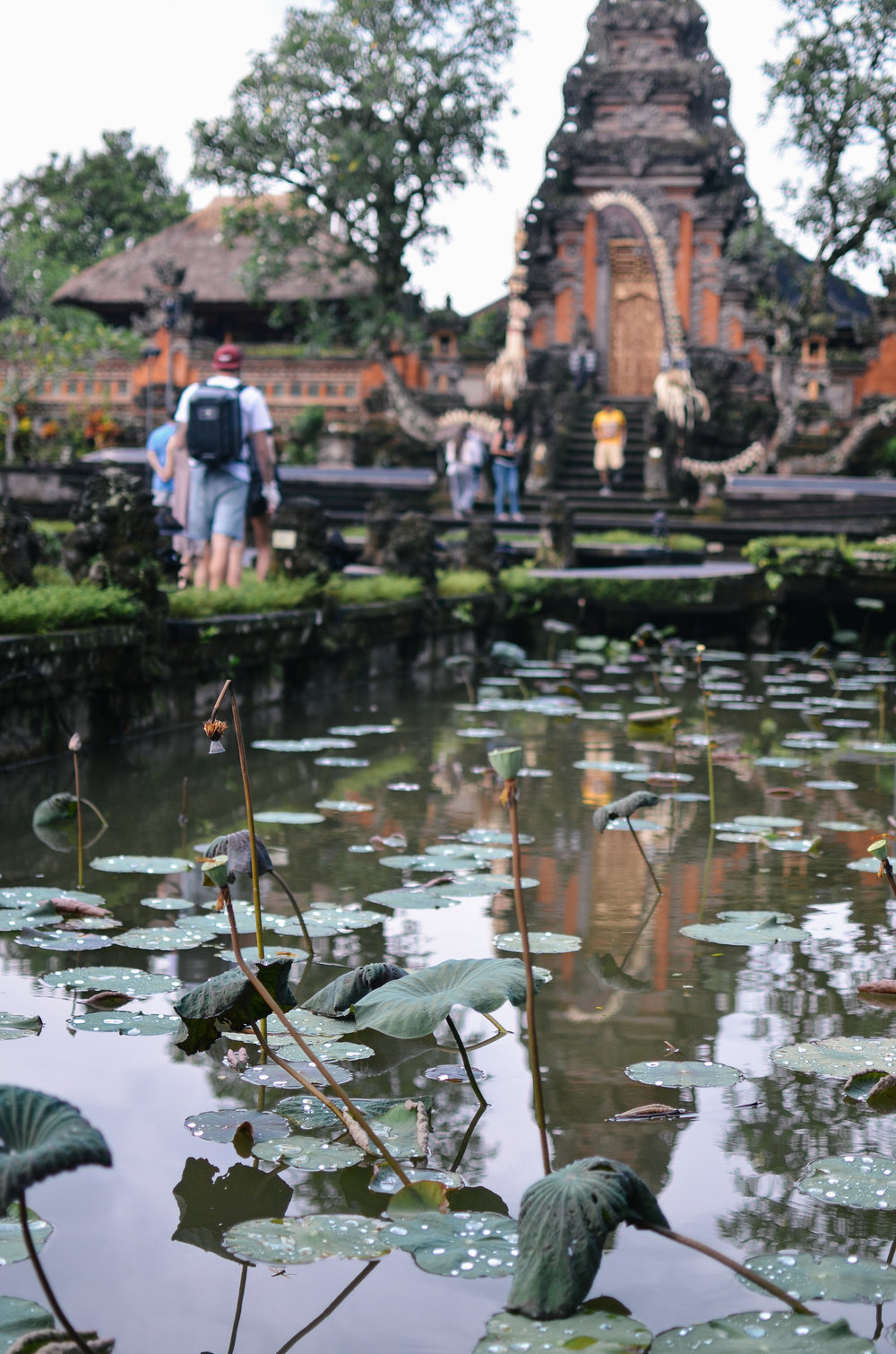 ubud+travel+guide+bali+life+on+pine_DSC_2544.jpg