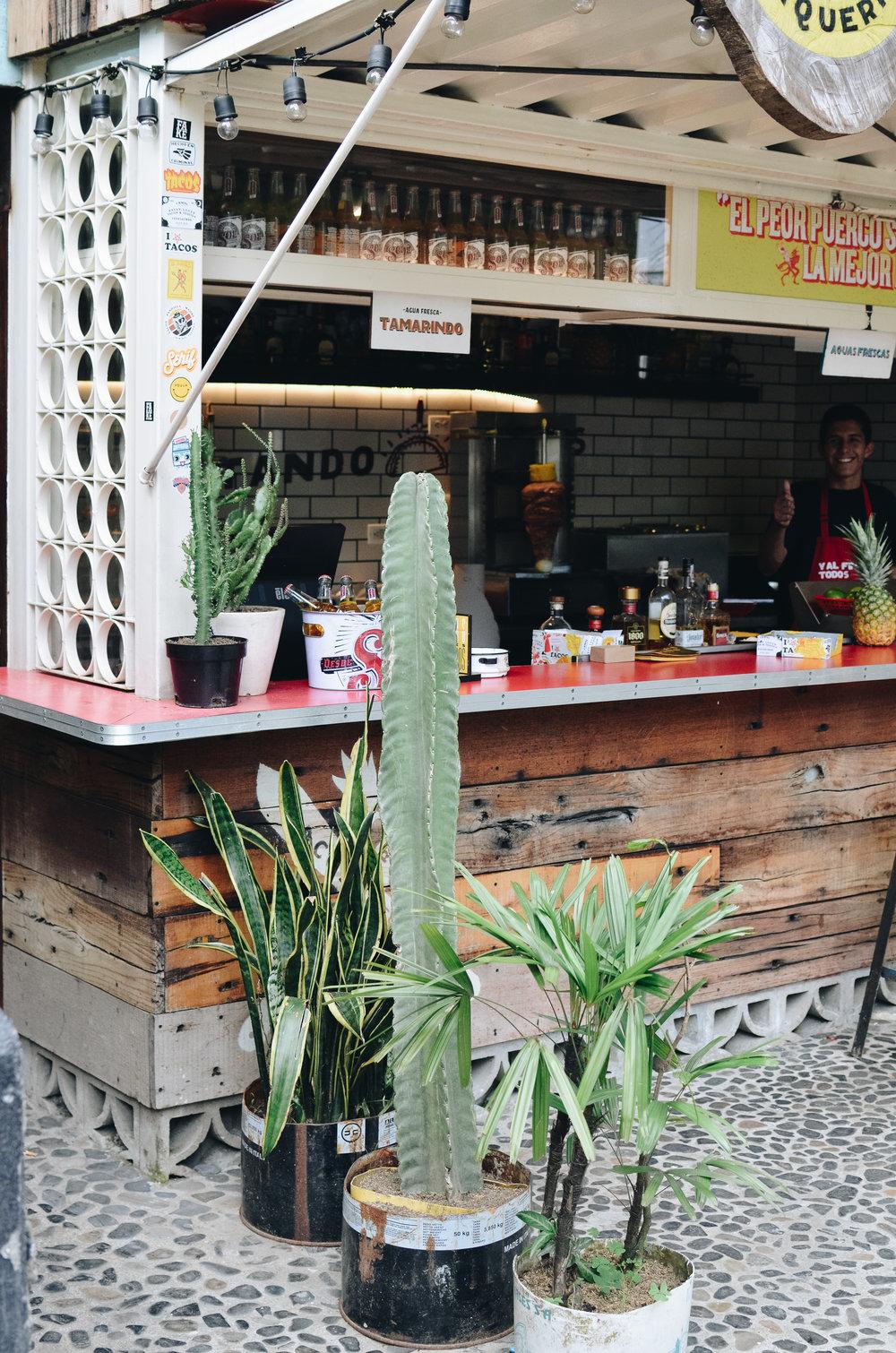 Medellin+Colombia_Life_on_Pine_DSC_0906.jpg