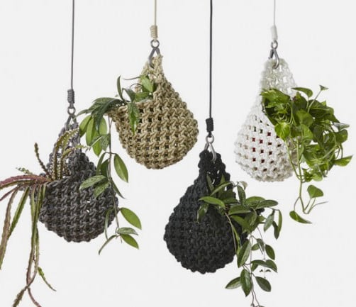 1.knotted-plant-pod-650x433.jpg