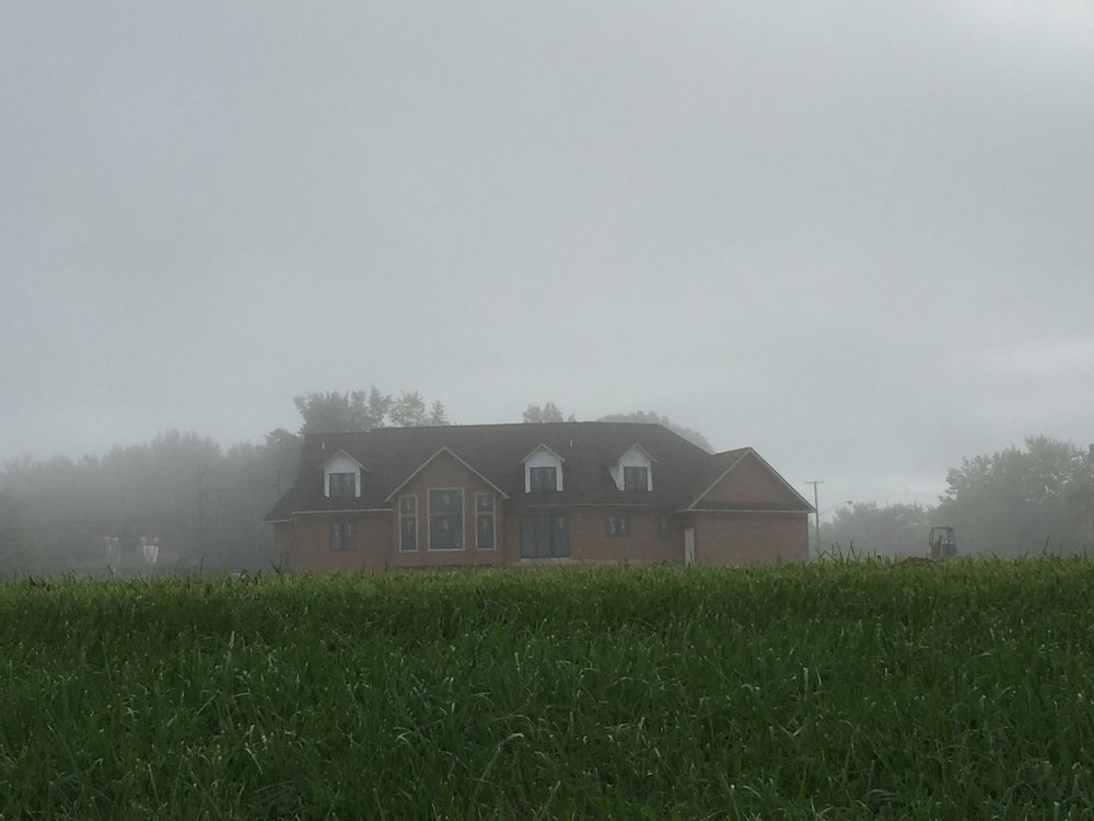 Viewing the back of our homestead  on a foggy morning.