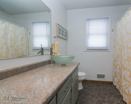 3957-Quincy-St-Columbia-Heights-MN-55421-12-bath.jpg