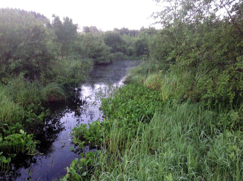 13 Creek.jpg