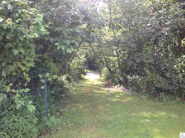 3773-skog-road-kettle river-path.JPG