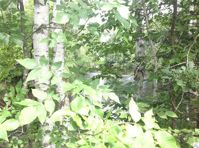 3773-skog-road-kettle river-woodsy view.JPG