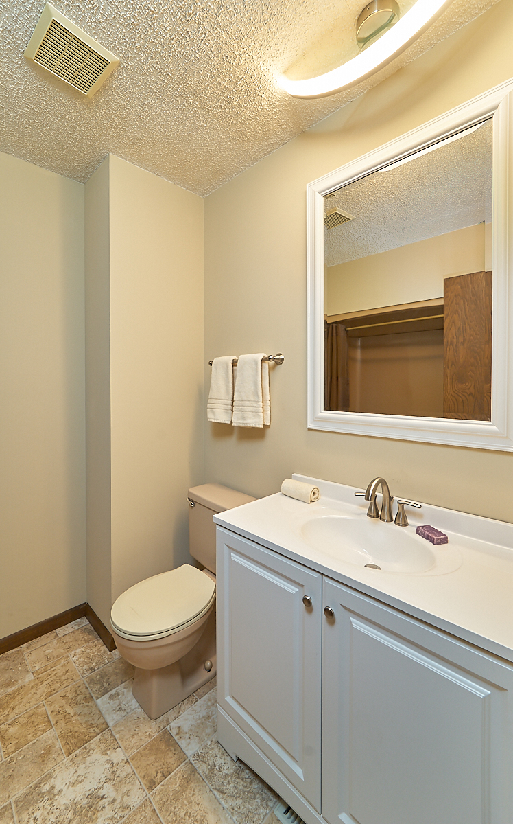 17211-davenport-street-ham-lake-bathroom 2.jpg