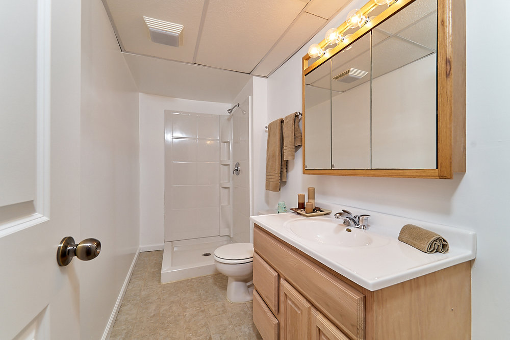 17211-davenport-street-ham-lake-bathroom 3.jpg