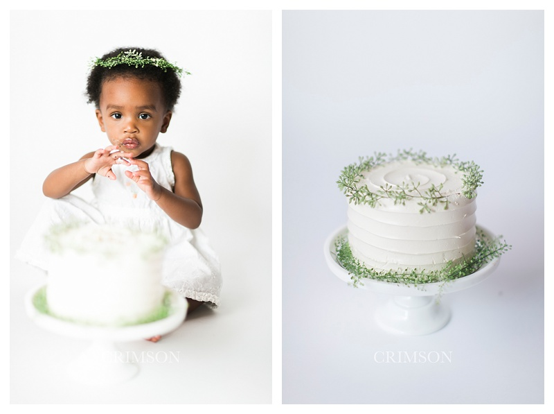Cake_smash_oakville_photographer_0018.jpg
