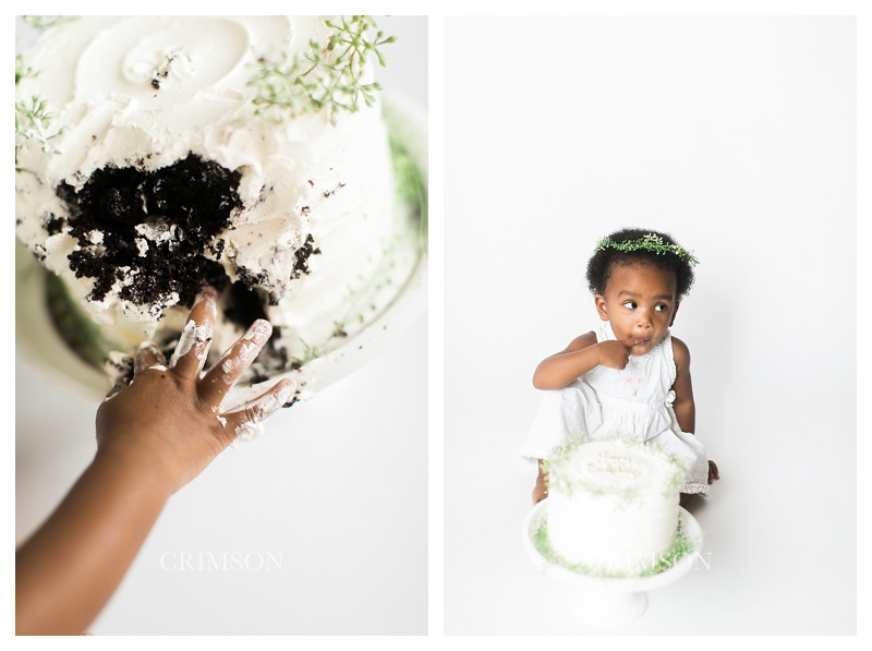 Cake_smash_oakville_photographer_0021.jpg