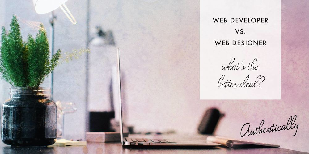 website designer vs website developer