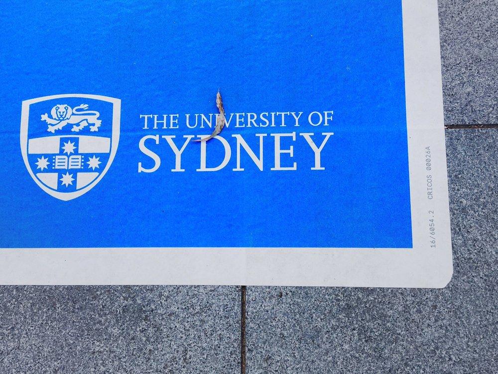 46. Uni Sydney sign
