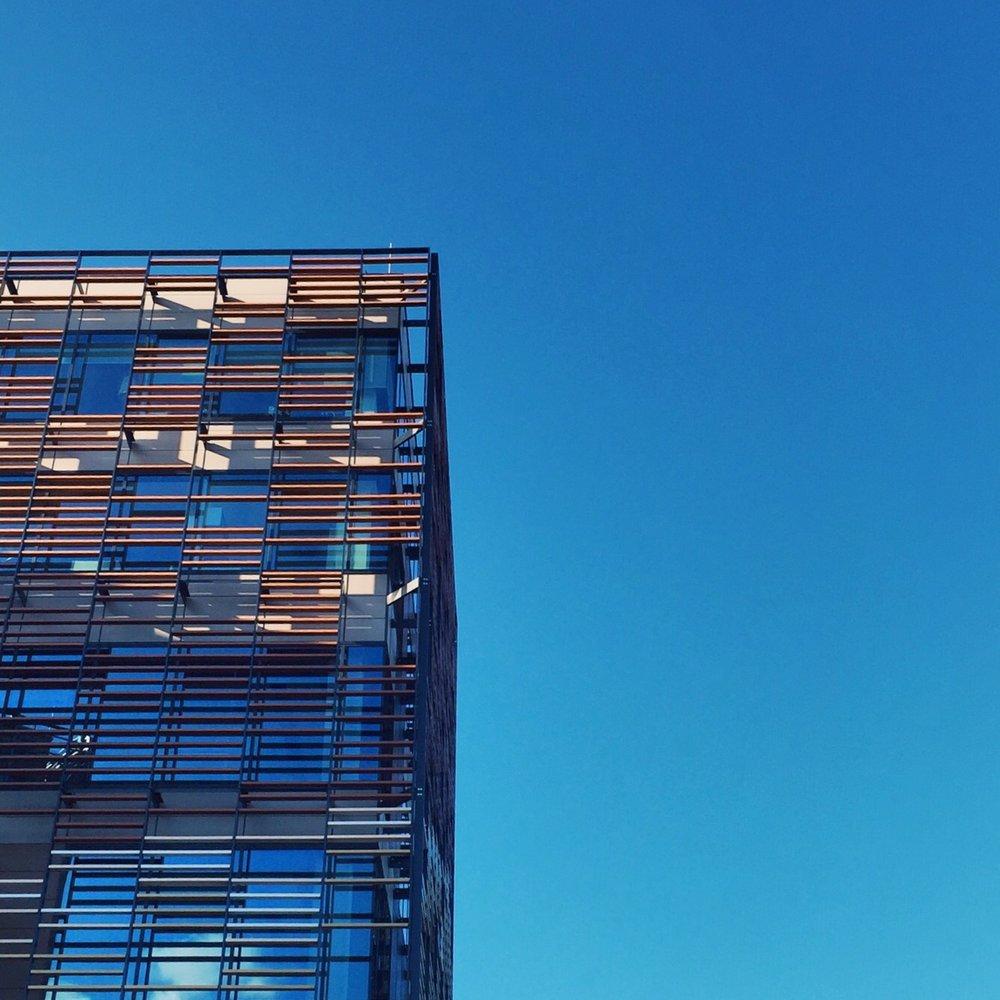 56. Wooden sky
