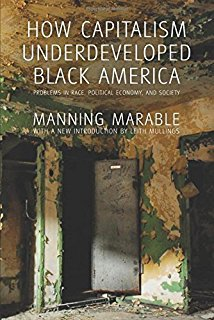 A chapter excerpt from a book that speaks on the history of the strategic efforts that destabilized the black community and autonomy through capitalism