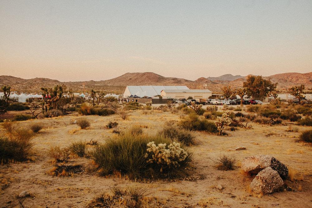 sheva-kafai-desert-daze-1642.jpg