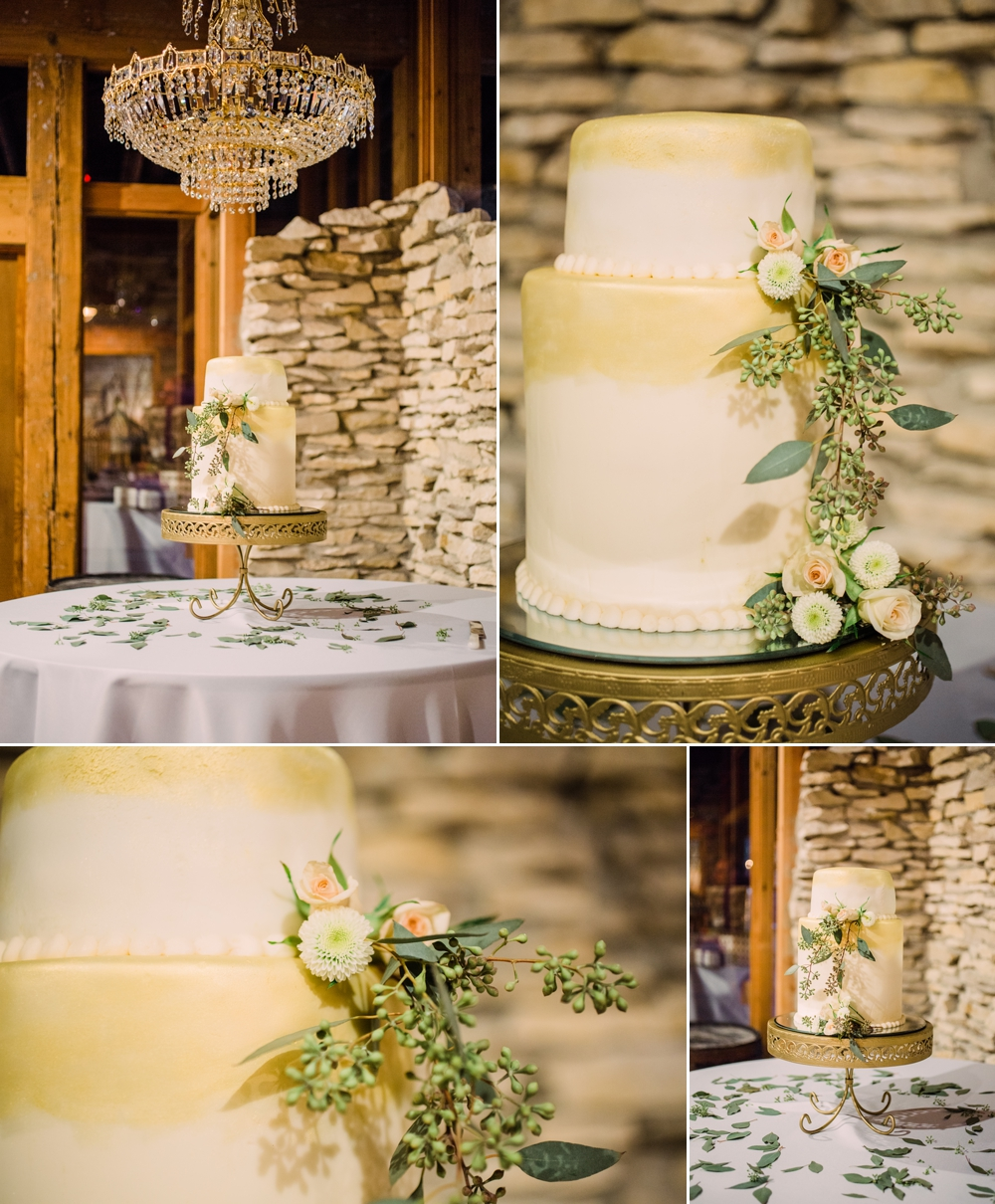 Wedding Photography_Rustix Restauarant and Reception_Humboldt Iowa_details of the cake_Iowa Wedding Photographer.jpg