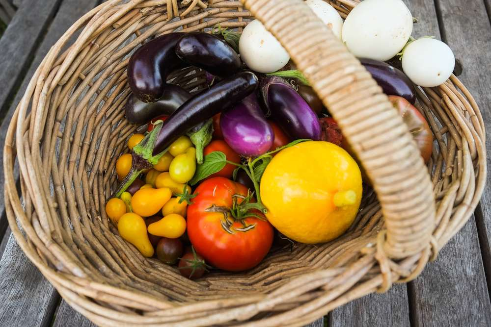 Fresh nutritious and delicious home grown food.