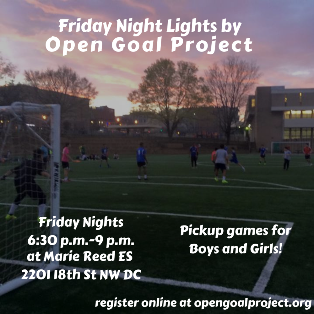 Open Goal Project (2).png