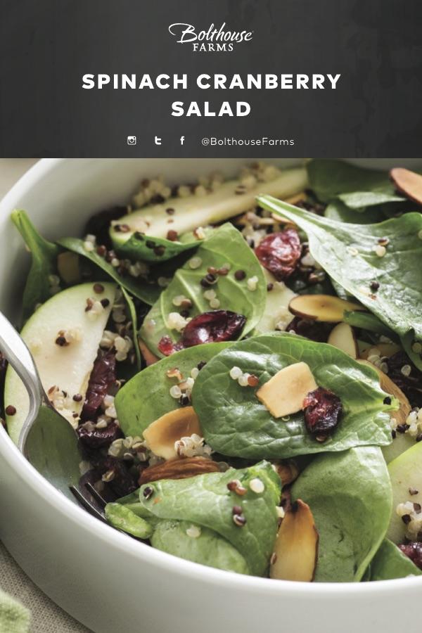 BHF_DRS-ORG_RAS_Spinach Cranberry Salad_022717_FNL.jpg