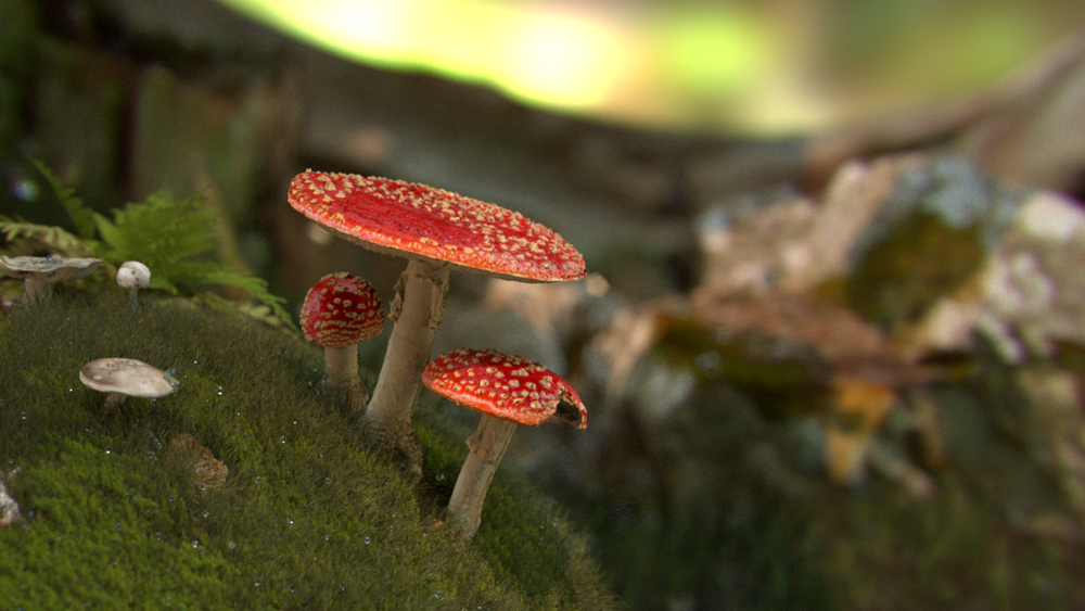 My image that I submitted to the rendering competition in the graphics course at ETH Zurich in 2017. I placed second in the competition and received a small prize.The scene includes these features: importance sampled environment maps, thin-lens depth of field with chromatic aberration and polygonal apertures, textures, normal and alpha maps, directional lights, translucency BSDF, specular BRDF and a dielectric BSDF. I built the scene in SideFX Houdini using assets from Megascans. The final scene contained up to three million polygons and several textures all between 512x512 up to 4K.