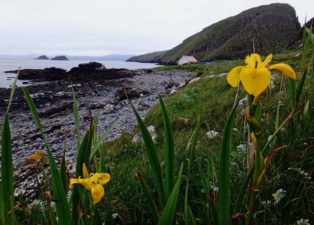 Shiant Isles View.jpg