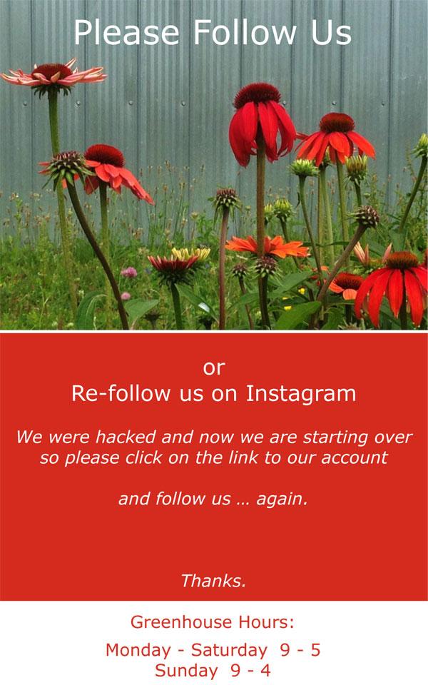 Please-follow-us-...jpg