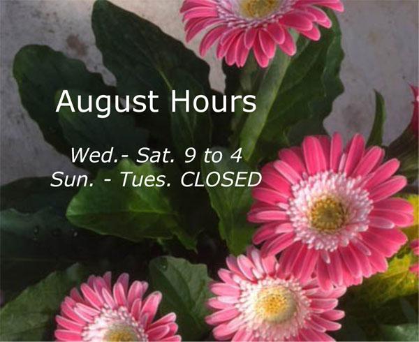 August-Hours-2018.jpg