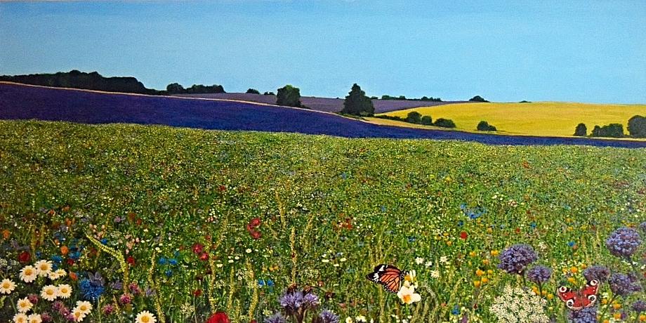 wild flower meadow.JPG