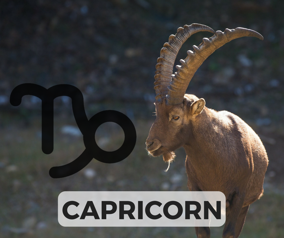 The CAPRICORN Signs + Symbol (icon designed by Freepik!)