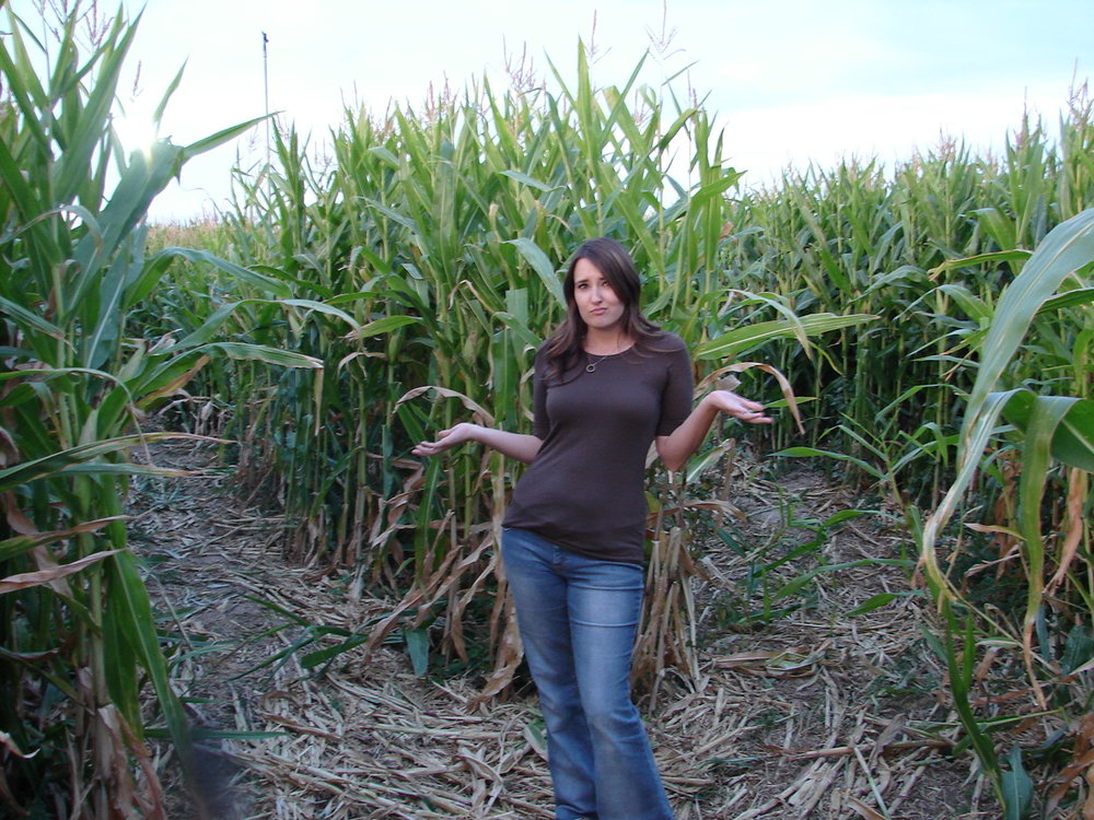 maze pictures 2009 001.jpg