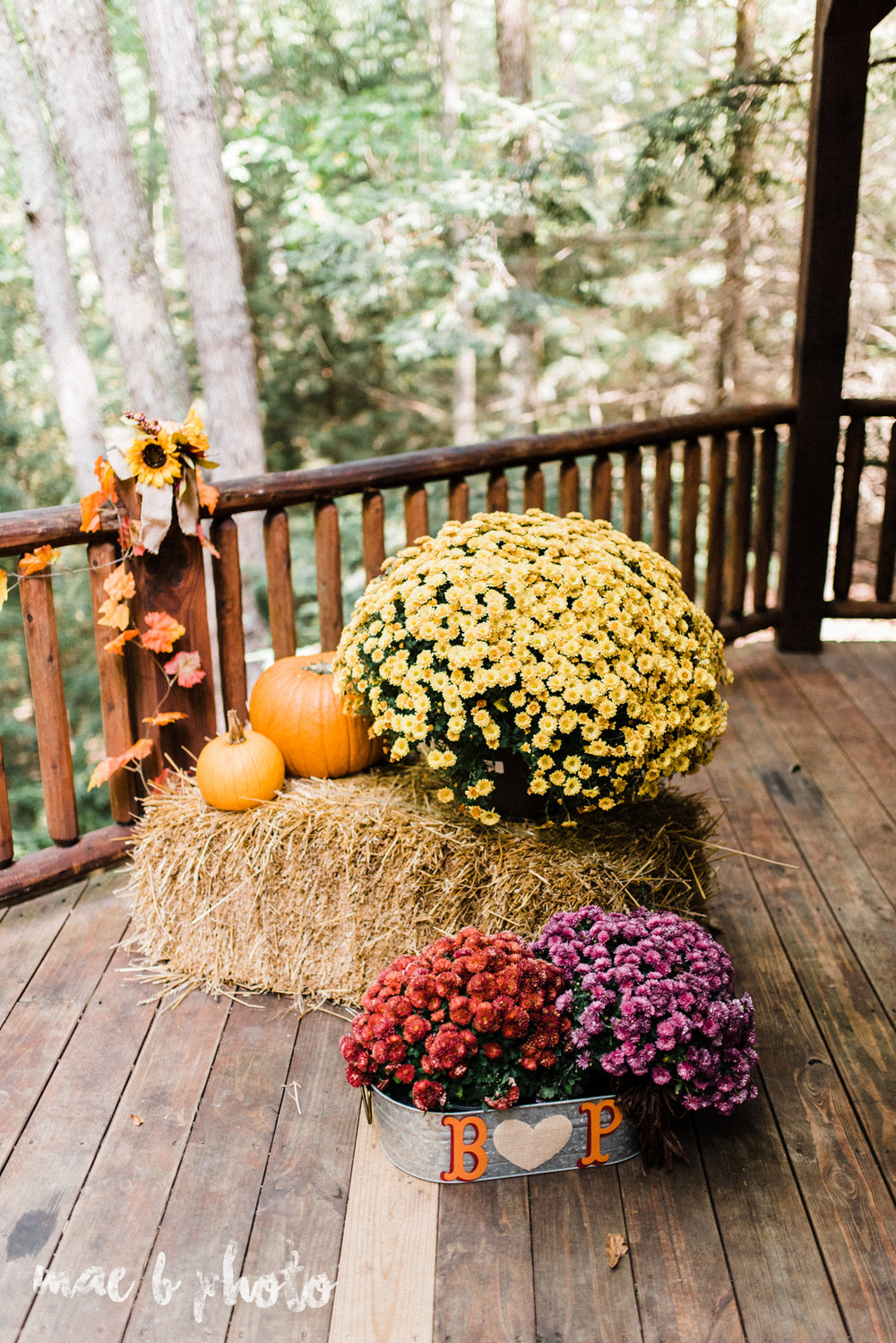 bobbi and pat's intimate fall cabin elopement in hocking hills old man's cave and rock house in logan ohio photographed by youngstown wedding photographer mae b photo-25.jpg