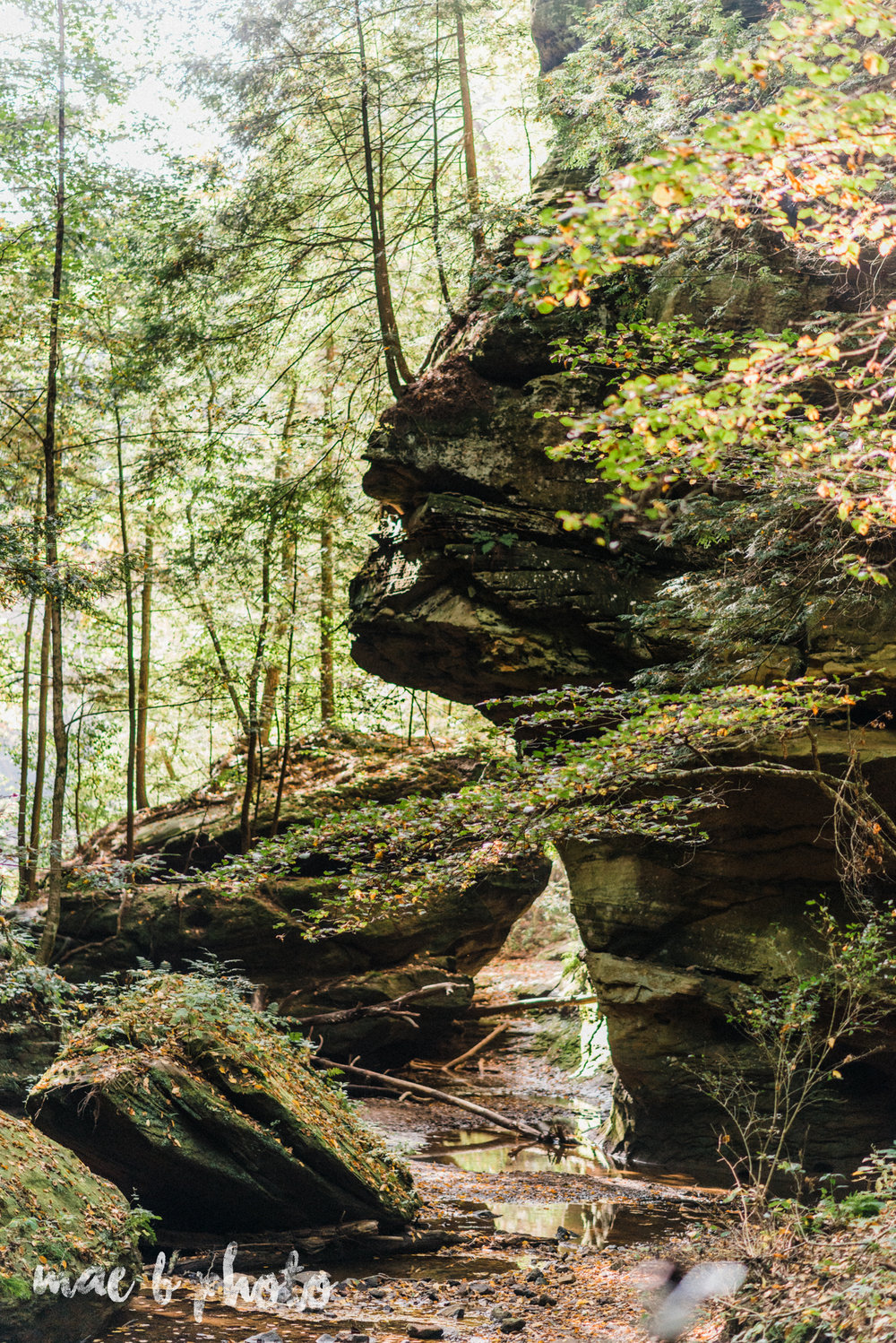 bobbi and pat's intimate fall cabin elopement in hocking hills old man's cave and rock house in logan ohio photographed by youngstown wedding photographer mae b photo-78.jpg