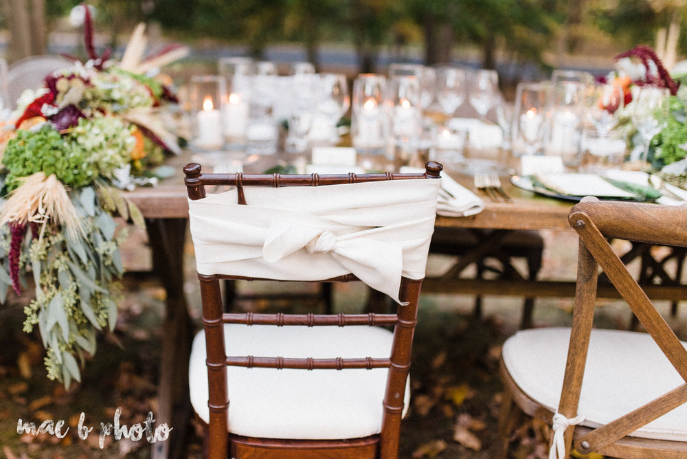 dinner under the trees intimate fall dinner party in youngstown ohio hosted by joe mineo of joe mineo creative with chrystal's catering photographed by youngstown wedding photographer mae b photo-9.jpg