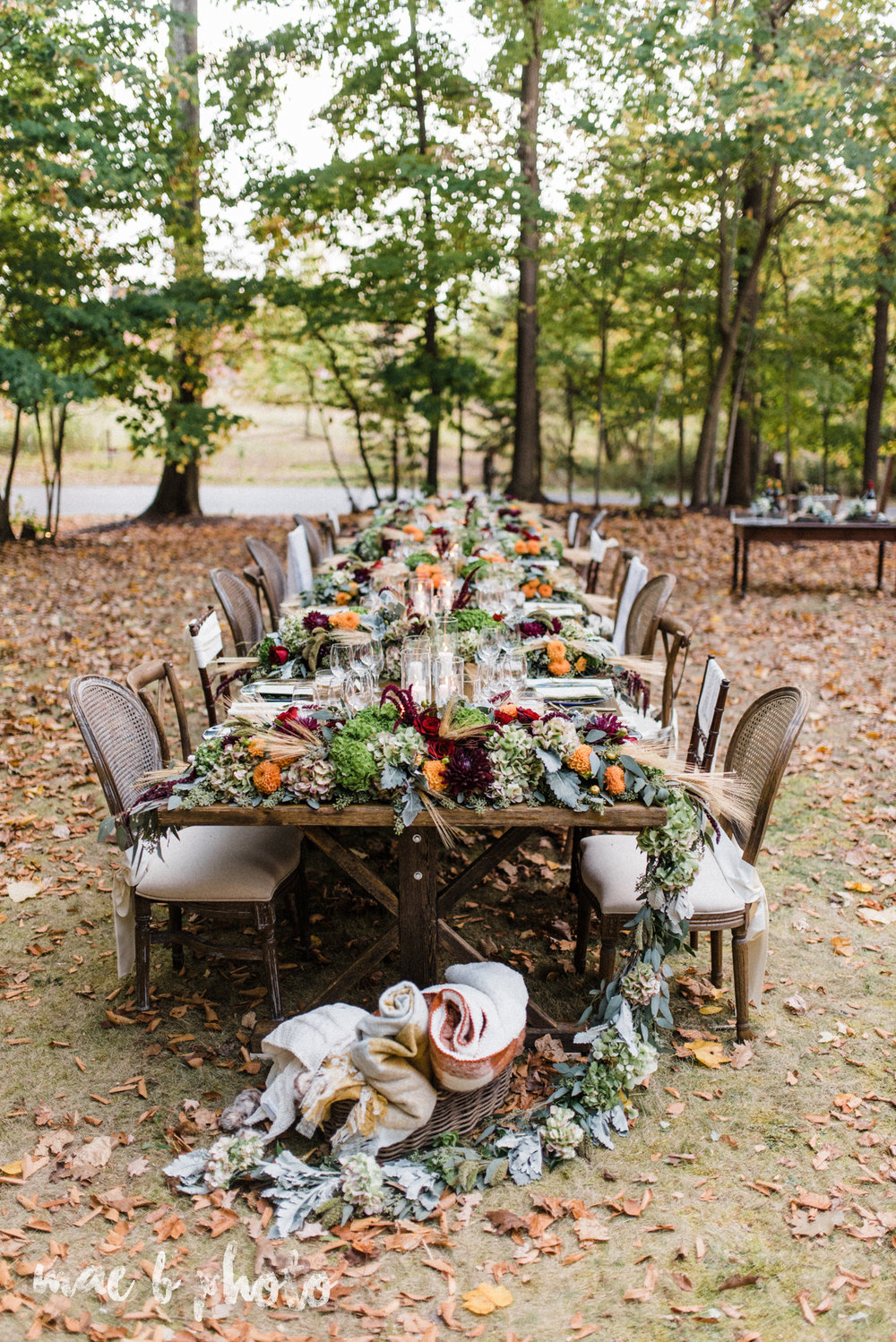dinner under the trees intimate fall dinner party in youngstown ohio hosted by joe mineo of joe mineo creative with chrystal's catering photographed by youngstown wedding photographer mae b photo-6.jpg