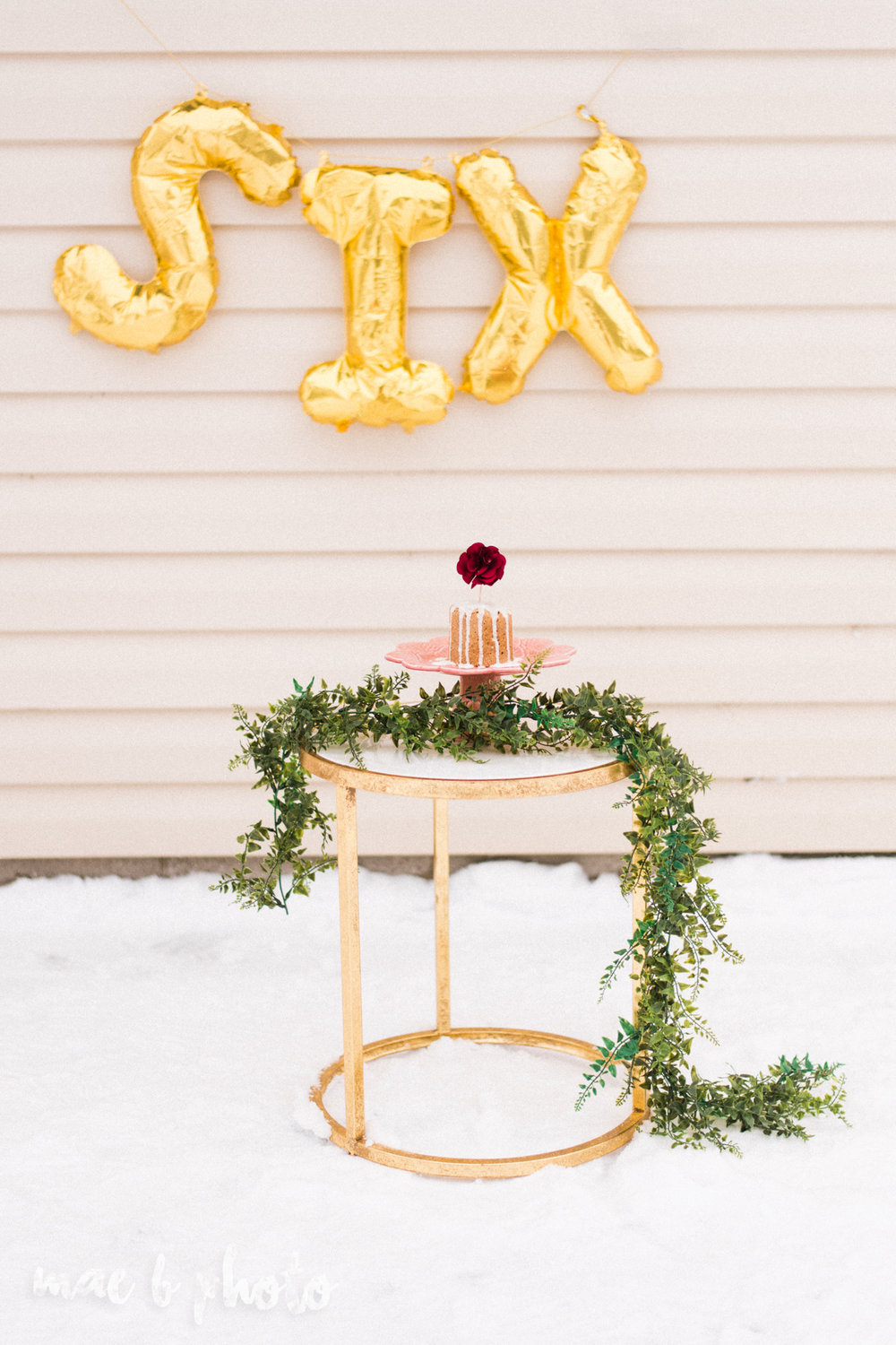 meat and sophie's winter gold glam sixth puppy birthday party in youngstown ohio photographed by youngstown wedding photographer mae b photo-1.jpg