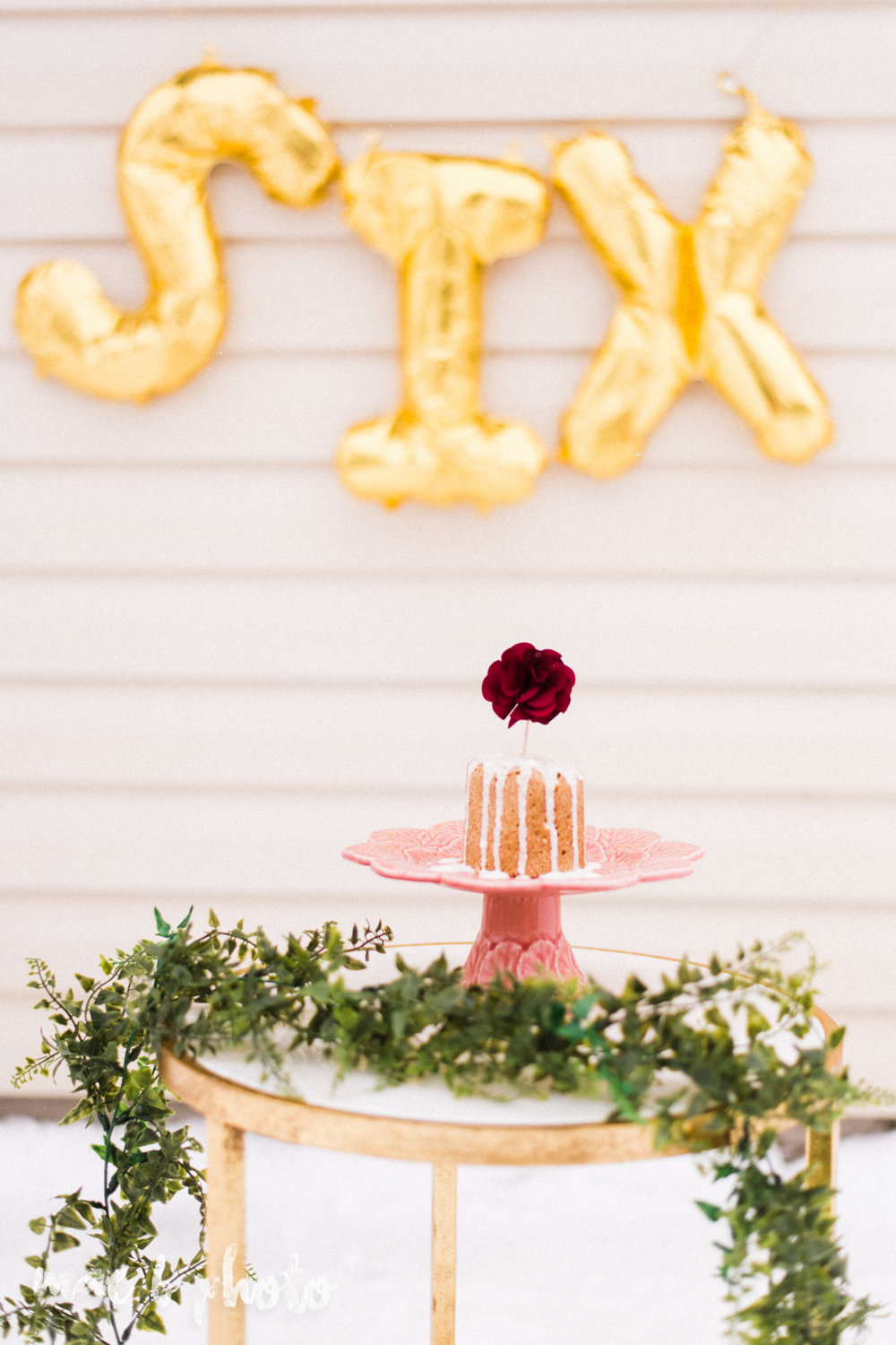 meat and sophie's winter gold glam sixth puppy birthday party in youngstown ohio photographed by youngstown wedding photographer mae b photo-5.jpg