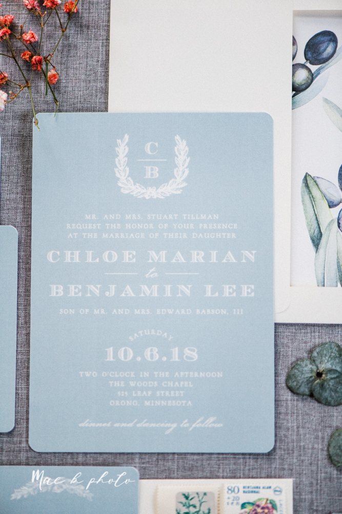 wedding invitation suite from basic invite online wedding invitations photographed in cleveland ohio by youngstown wedding photographer mae b photo-13.jpg