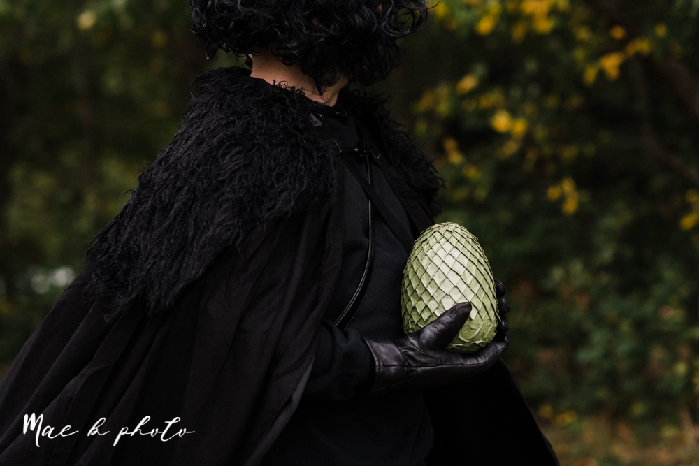 mae and lou's game of thrones fall october halloween pregnancy announcement with dog halloween dragon costumes diy dog costumes diy dragon costumes and daenerys targaryen mother of dragons dragon eggs and jon snow king of the north-10.jpg