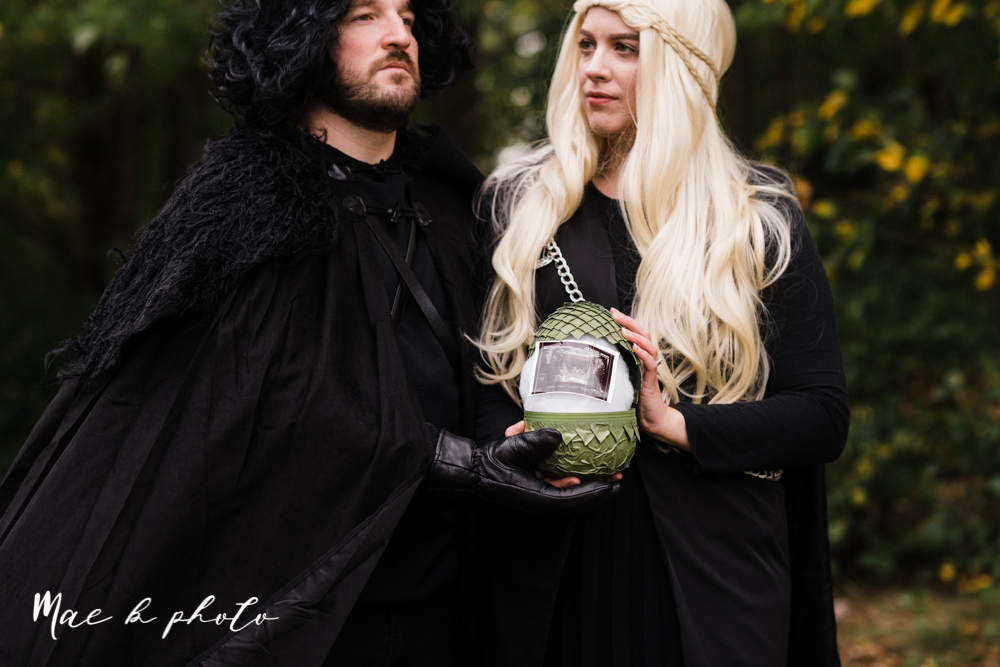 mae and lou's game of thrones fall october halloween pregnancy announcement with dog halloween dragon costumes diy dog costumes diy dragon costumes and daenerys targaryen mother of dragons dragon eggs and jon snow king of the north-12.jpg