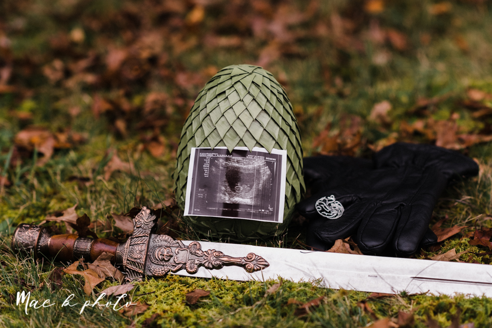mae and lou's game of thrones fall october halloween pregnancy announcement with dog halloween dragon costumes diy dog costumes diy dragon costumes and daenerys targaryen mother of dragons dragon eggs and jon snow king of the north-30.jpg