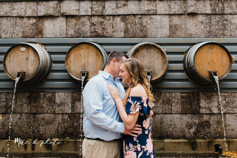 erin and shawn's fall Cleveland winery engagement session at sapphire creek winery photographed by youngstown wedding photographer mae b photo-13.jpg